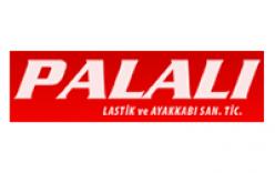 Palalı
